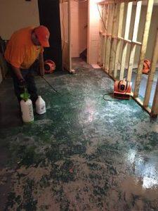 Disaster Restoration Job
