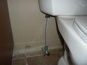 Water Damage Sewage Backup Toilet Leak