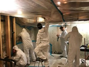 Technicians Mitigating Mold And Water Damage In A Home