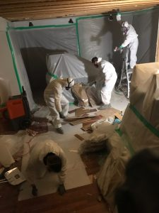 Mold-removal-team-at-work